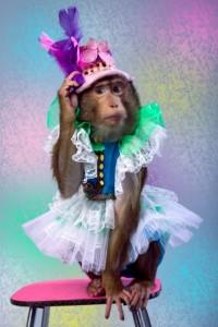 Поздравление коллегам с новым годом обезьяны