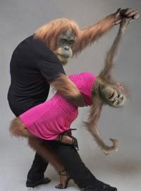 Картинки новый год обезьяны
