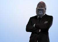 Шуточные картинки про новый год обезьяны