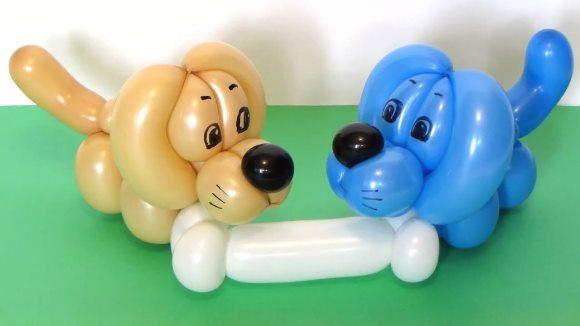 твистинг собаки