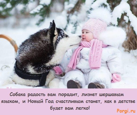 фото детей и собачек