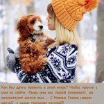 девушка и собака милые фото