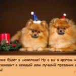 2 собаки новогодние