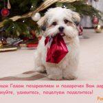картинка собаки под елкой