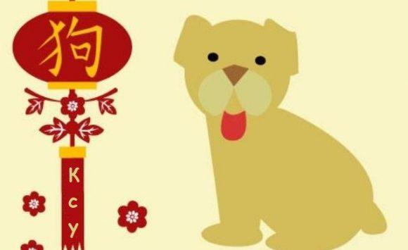 собака - Ксу - Снегурочка
