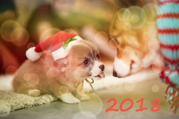 поздравления прозой на новый год 2030