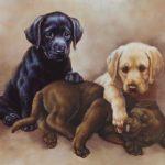 Старинный стиль рисунка с собаками