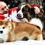 Президент и собачки прикольная картинка