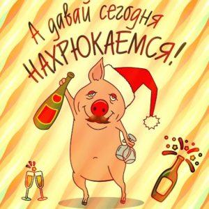 конкурс на год свиньи