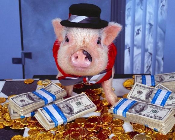 новогодняя викторина про свинью