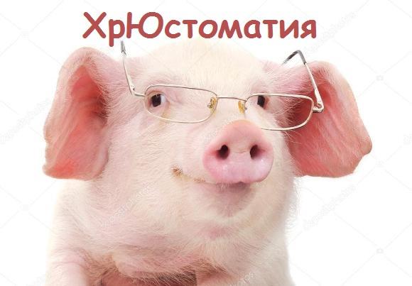 смешная викторина про свинью