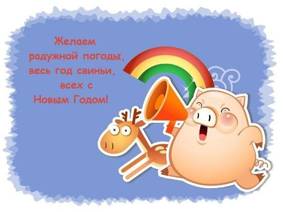 свинья и радуга