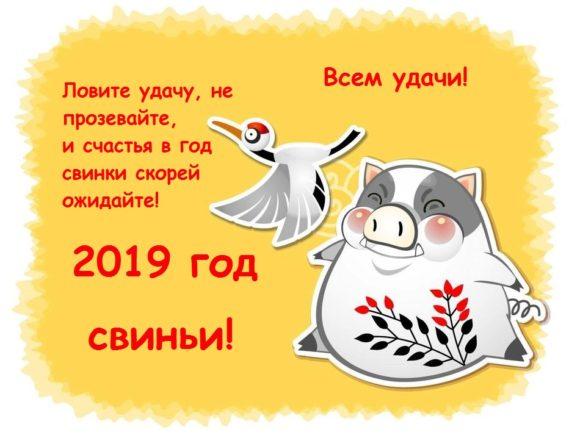 поздравления в картинках на год свиньи
