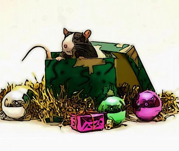 конкурсы и сценарии на год крысы