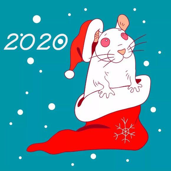 Картинки по запросу крыса новый год