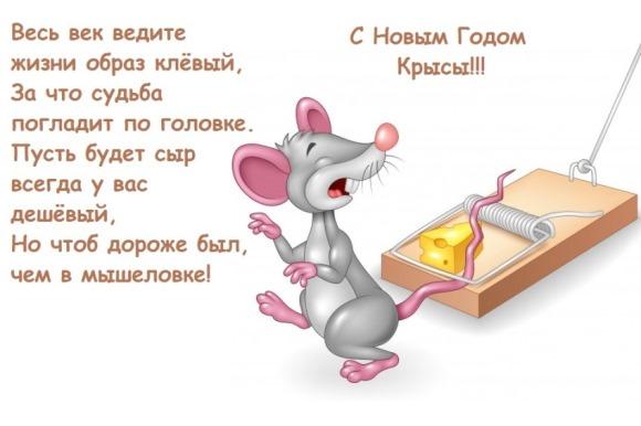 юморные пожелания в год мышки