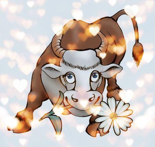 Викторина к году быка