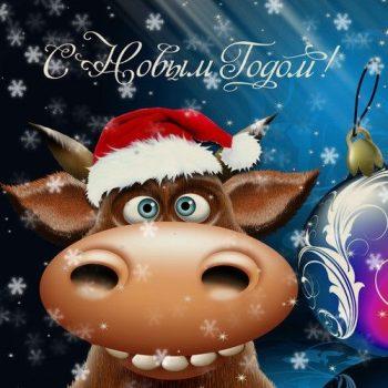 поздравления в стихах на новый год быка