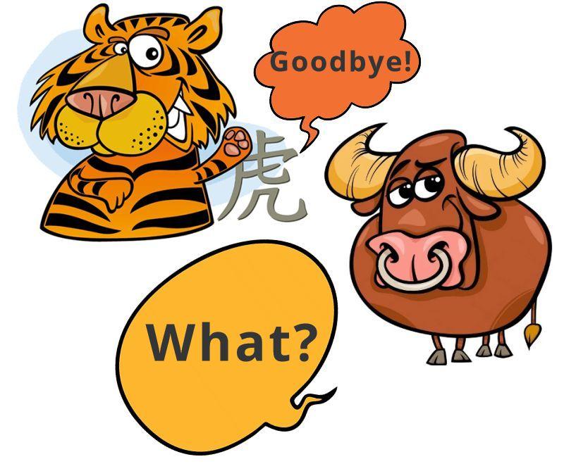 Сценарий с тигром и быком