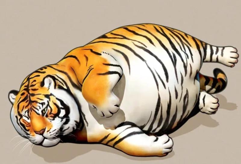 сценка-экспромт Новый Год Тигра 2022 взрослым