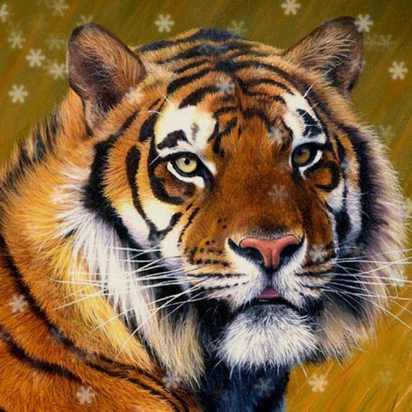 сказ про мудрого тигра детям