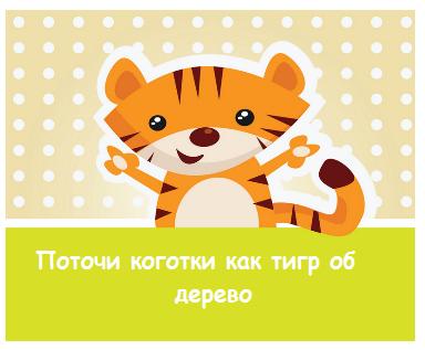 пример карточек с тигром детям